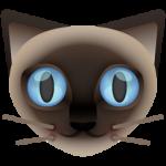 cat_256